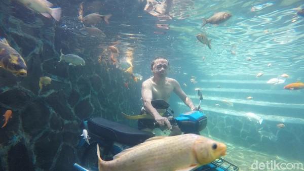 Air di kolam foto underwater berasal dari mata air embung hulu Ciawi. Masyarakat setempat menyebutnya mata air Kangoraan. Konon, siapapun yang mandi atau mencuci muka pakai air ini bisa menjadi awet muda. (Bima Bagaskara/detikcom)