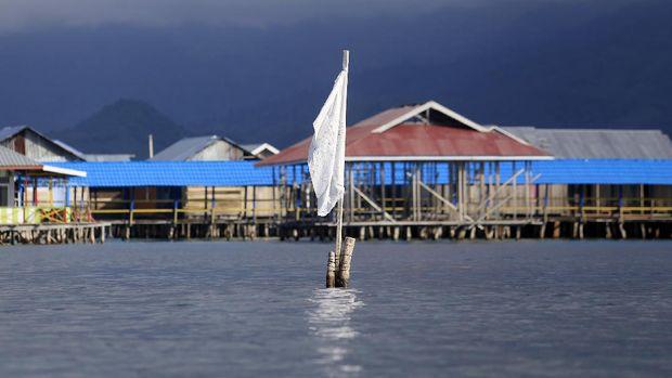 Seorang warga suku bajau menjemur teripang laut di desa Torosiaje.