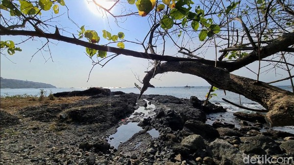 Pulau tersebut dihiasi dengan pasir putih, air laut yang begitu jernih, batu karang yang begitu eksotis sangat cocok bagi anda yang suka snorkeling. Pohon yang rimbun memberikan keteduhan bagi pengunjungnya.