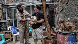 Program vaksin rabies untuk hewan peliharaan diselenggarakan di sejumlah kawasan Jakarta Utara. Program itu digelar untuk wujudukan Jakarta Bebas Rabies.