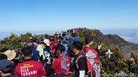 Amankah Naik Gunung Saat Ini, Pendaki Senior: Tidak!