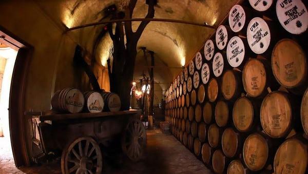 Tequila hasil produksi pabrik ini akan diletakkan di gudang bawah tanah properti. Tequila dimasukkan ke dalam tong kayu yang terbuat dari kayu pohon mangga dalam jangka waktu tertentu. Setelah itu, tequila siap diminum.