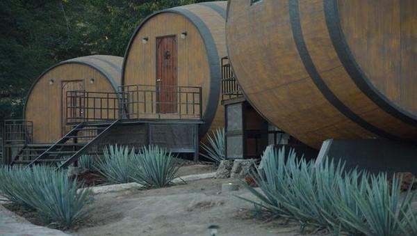 Fasilitas yang ditunggu-tunggu tamu hotel adalah mengikuti tur sambil mencicipi tequila langsung dari pabriknya. Di kawasan itu memang beroperasi pabrik yang mampu menghasilkan 15.000 tequila setiap harinya.