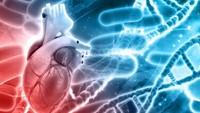 Viral Penampakan Pengentalan Darah Pasien COVID-19 Picu Serangan Jantung