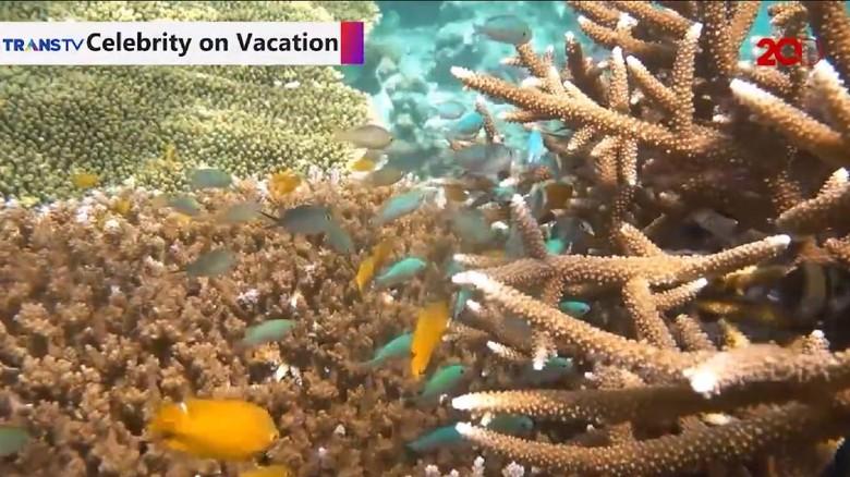 snorkeling di pantai kilo lima
