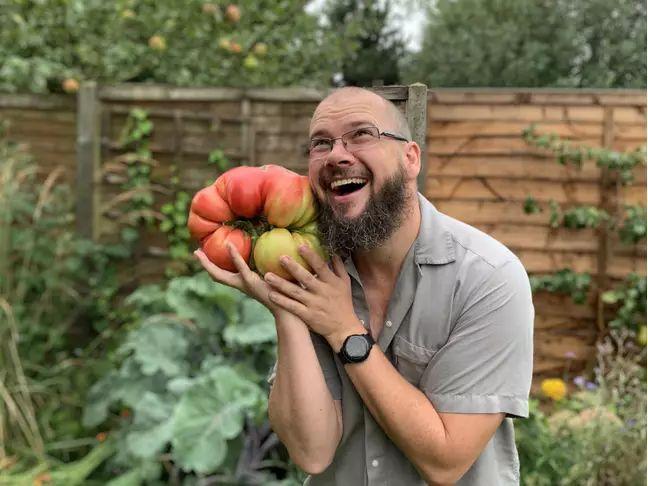 Tomat jumbo