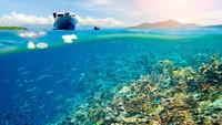 Potret Betapa Rindunya dengan Keindahan Bawah Laut Bunaken