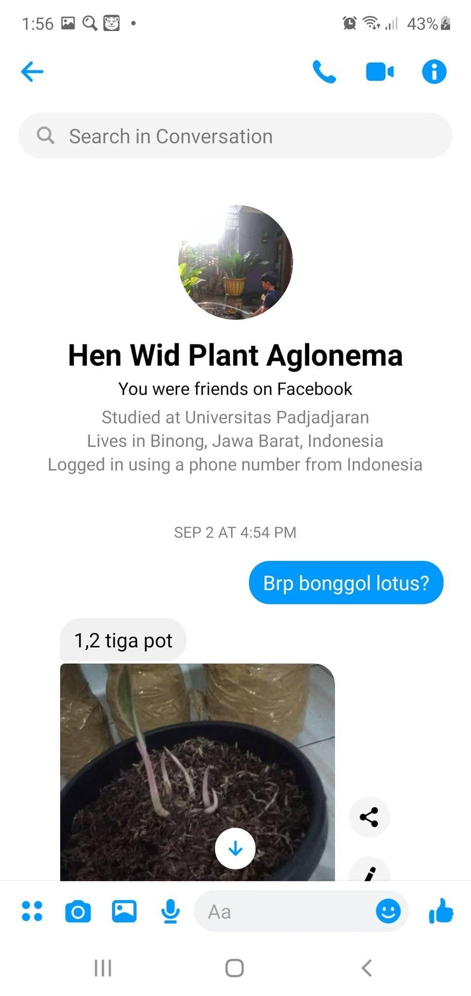 Dit Siber Bareskrim ungkap kasus penipuan jual beli tanaman hias