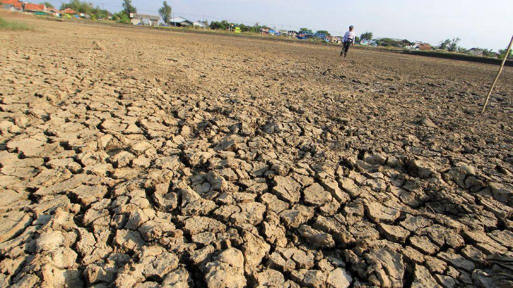 Wilayah Jabar Akan Memasuki Musim Kemarau Juni Mendatang