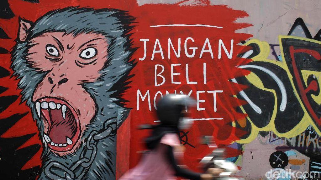 Mural Anti Perdagangan Hewan Hiasi Pasar Satwa Yogyakarta