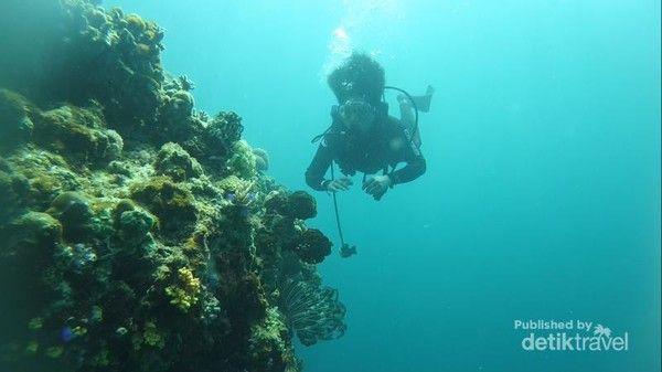 Pulau Hari Sulawesi Tenggara