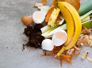 Olah Sampah Jadi Makanan hingga Pupuk, Ini Manfaat yang Bisa Kamu Rasakan