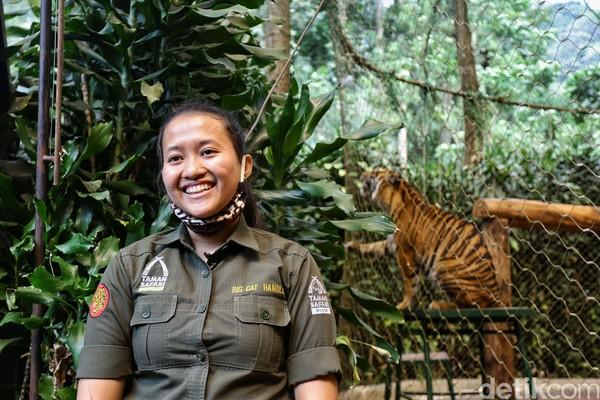 Namanya Afri, dia sudah hampir dua tahun menjadi keeper harimau di Taman Safari Bogor. (Rafida Fauzia/detikcom)