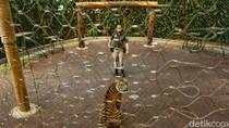 Perjuangan Pengelola Kebun Binatang di Tengah Himpitan Corona