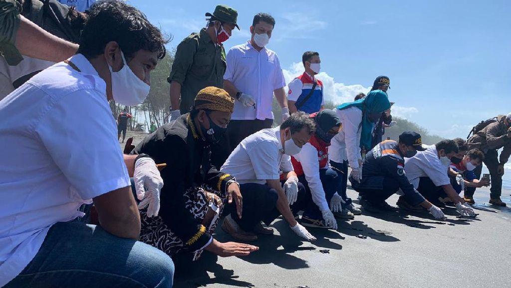 Pertamina Lepasliarkan Anak Penyu Hasil Konservasi di Pantai Sodong