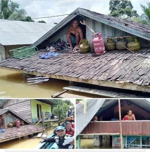 Banjir di Kalteng.