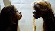 Foto: Koleksi Awetan Kepala Manusia yang Disingkirkan Museum