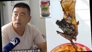 Waduh! Keluarga Ini Temukan Bangkai Kelelawar di Dalam Kaleng Saus Tiram