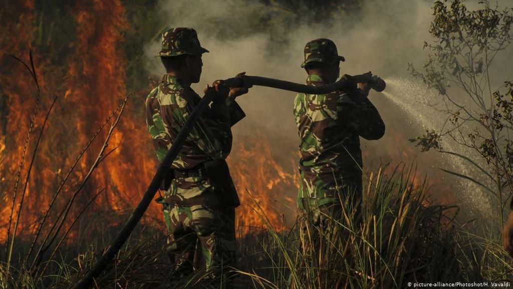 RUU Cipta Kerja Hapus Pasal Sakti Penjerat Pembakar Hutan