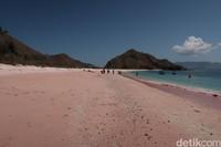 Inilah Long Pink Beach yang ada di Pulau Komodo.