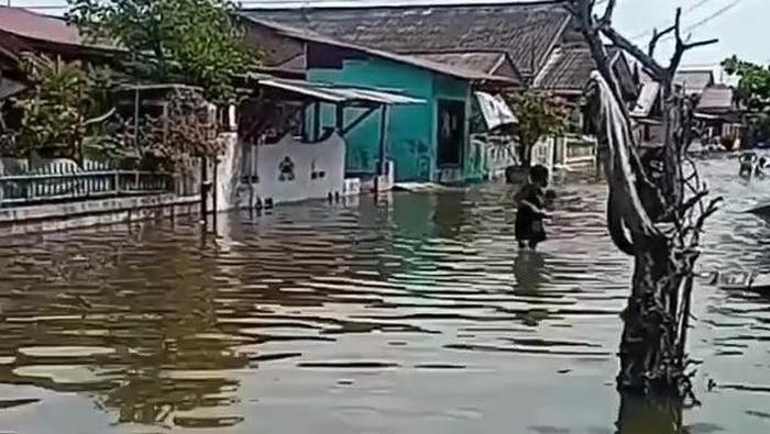 Banjir rob di Medan Belawan (dok. Istimewa)
