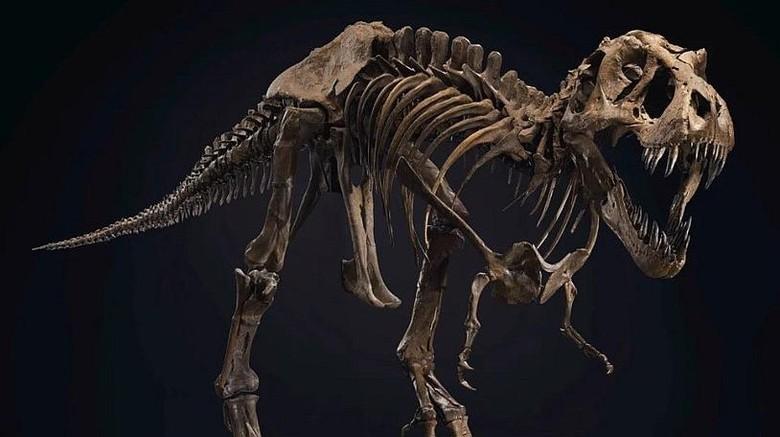DInosaurus dilelang