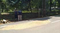 News of The Week: Kasus Briptu Andry Jadi Korban Tabrak Lari Oknum TNI