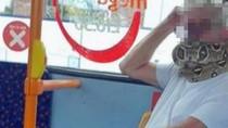 Waduh, Penumpang Bus Ini Viral karena Pakai Masker dari Ular Hidup