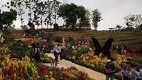 Total anggaran yang digelontorkan untuk pembangunan obyek wisata tersebut senilai kisaran Rp 7 Miliar. Semua potensi yang ada di desa Bulu seperti makam RA Kartini, Batik Tulis dan Akar Jati didorong sebagai ikon menarik TBAK. (Arif Syaefudin/detikcom)