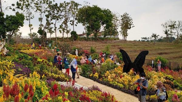 Bertepatan dengan peringatan wafatnya Raden Ajeng (RA) Kartini, sebuah destinasi wisata baru diresmikan di Rembang. Namanya Taman Batik Akar Kartini (TBAK). Lokasinya di kompleks makam RA Kartini. (Arif Syaefudin/detikcom)