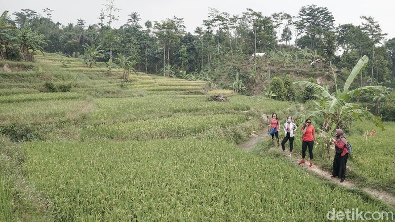 hiking di Sentul