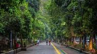 CegahKerumunan, PedestarianKebun Raya Bogor Pada Akhir Pekan Ditutup