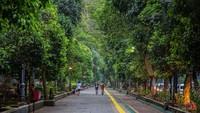 Kebun Raya Bogor, Wisata Murah Buat Kamu yang Tidak Mudik