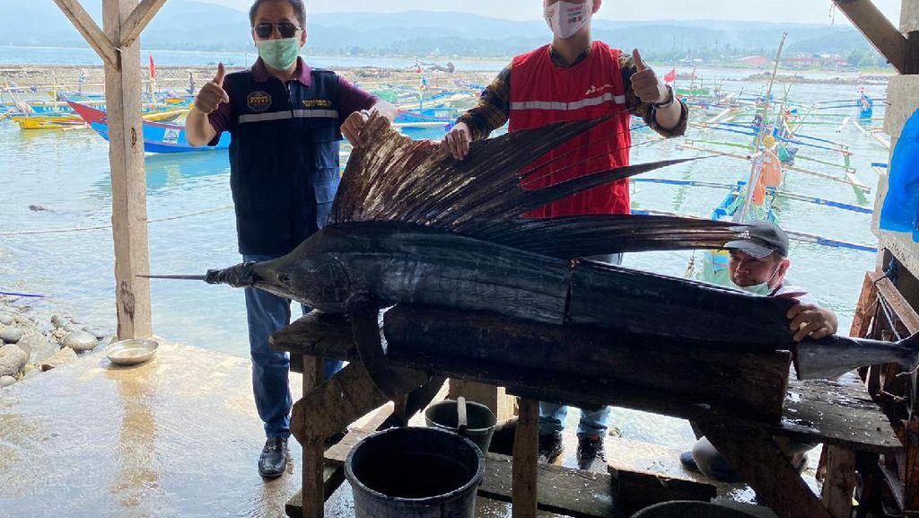 BPH Migas Minta Pertamina Bangun SPBN di Pelabuhan Krui