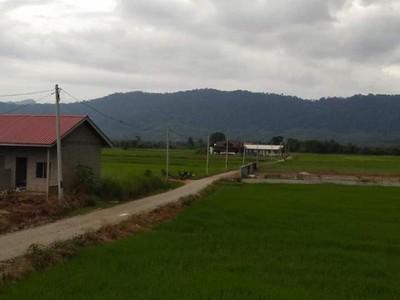 Damainya Kampung Yooi di Pulau Langkawi