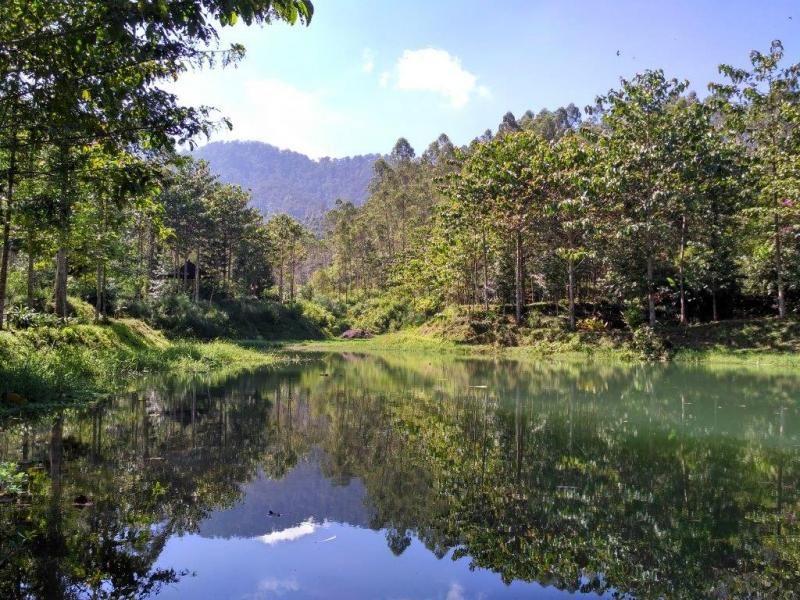 Sukaluyu Bandung