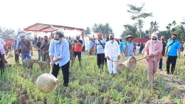 Festival menangkap belalang di Pangandaran.