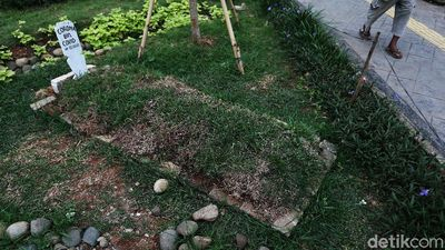 Kuburan Corona, Ingatkan Bahaya COVID-19