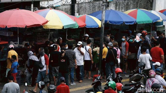 Meski Jakarta masih menerapkan PSBB, namun sejumlah warga masih saja berkerumun. Seperti yang terjadi di Pasar Ikan Hias Jatinegara, Jakarta Timur.
