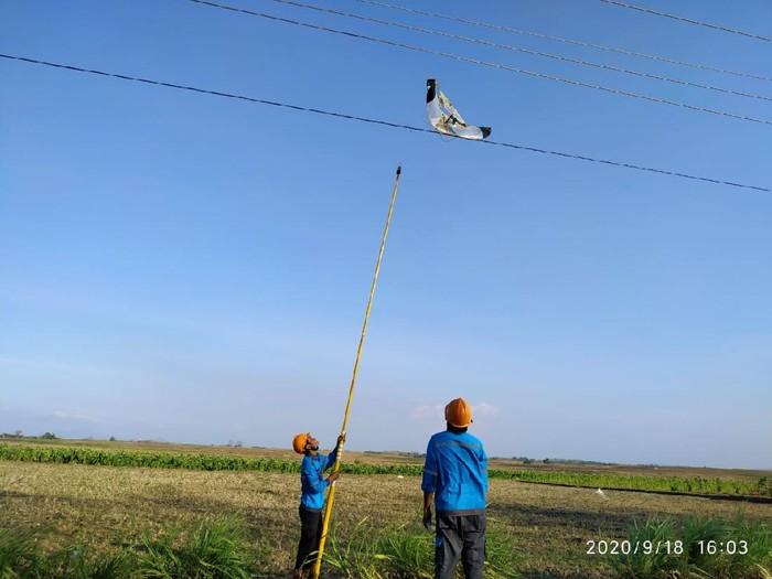 Jaringan listrik di Rembang kerap mengalami gangguan disebabkan layang-layang yang tersangkut di kabel.