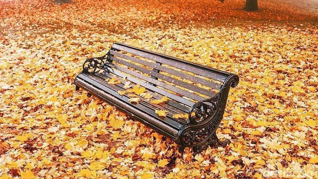 Potret Kecantikan Inggris saat musim gugur