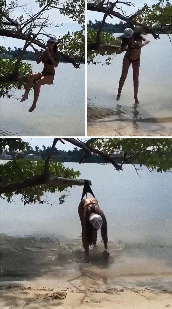 Ingin foto estetik, eh malah jatuh dan tersangkut di dahan pohon.