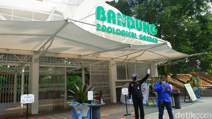 Wisatawan ke Kebun Binatang Bandung menurun 70 persen