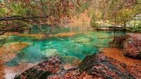 Blausee, Danau Patah Hati di Swiss yang Paling Romantis