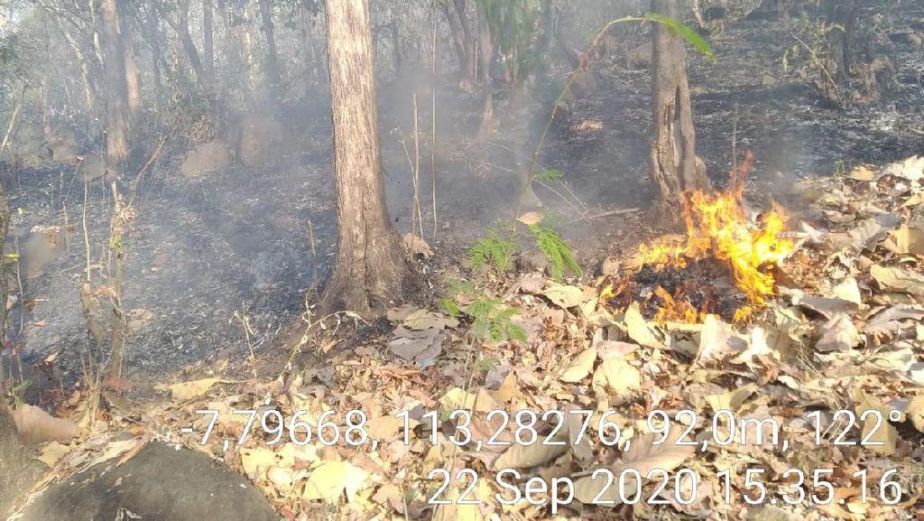 6 Hektare Hutan di Gunung Bentar Probolinggo Terbakar