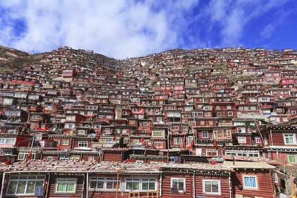 Biksu, biksuni dan siswanya pun membangun pemukiman di sekitar kampus.