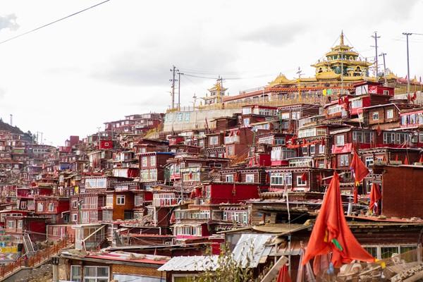 Kini sudah lebih dari 40.000 jiwa yang mendalami agama Buddha di sana.