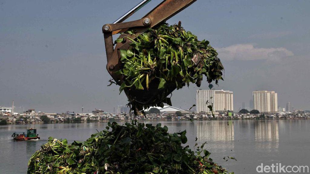 Foto Pengerukan Waduk Pluit Siap Antisipasi Banjir