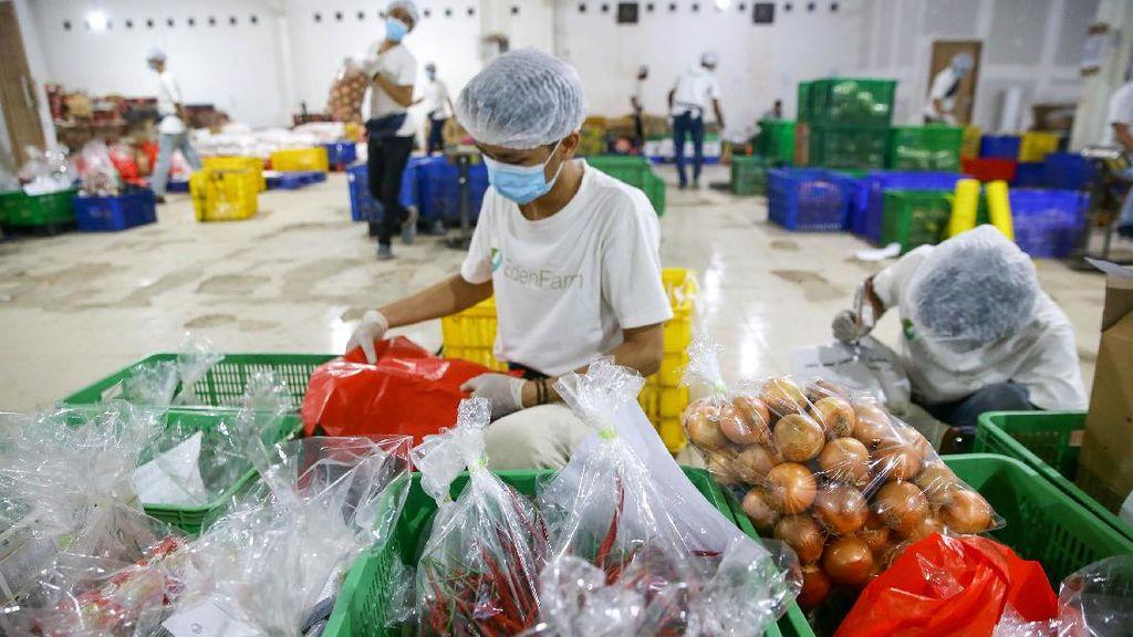 Belanja Sayuran Tanpa Keluar Rumah Mudah Banget