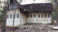 Tentang Rumah Tua Milik Eks Bupati di Tengah Kebun Jati Gunungkidul
